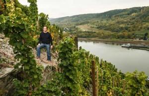 molitor vineyard